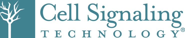 CST Alternate Logo 4-28-14